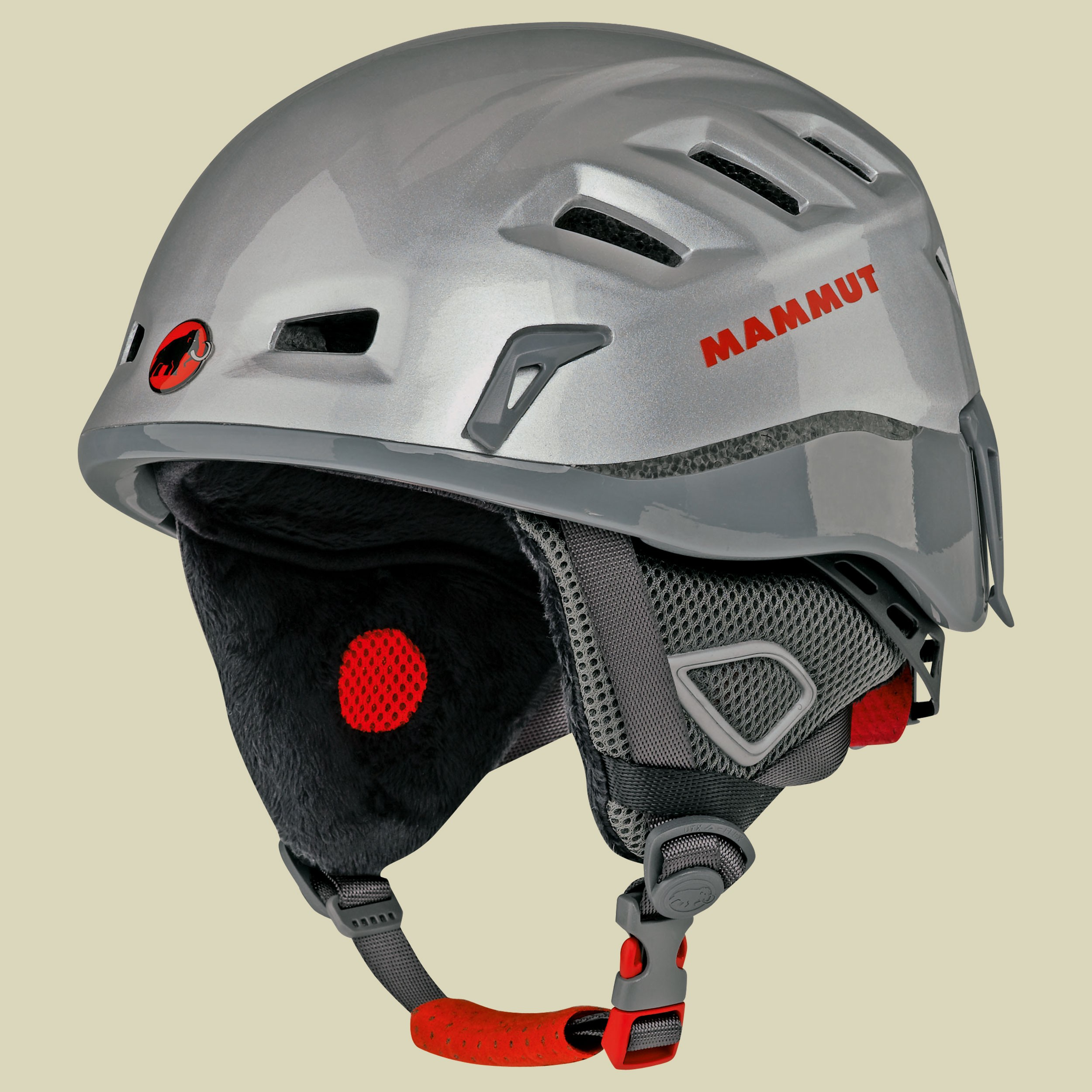 Alpine Rider