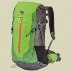 salewa_ascent_30_36_carbon_anthra_cactus_fallback